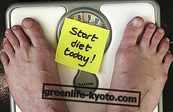 Diéta pre život: diéta Kousmine