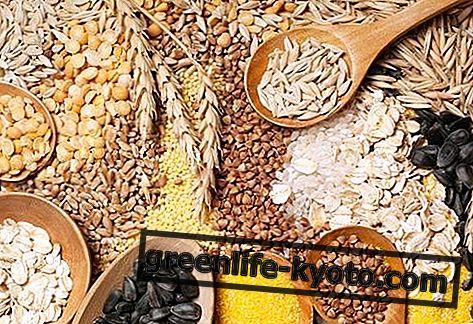 Bitkisel proteinler: yararları, kontrendikasyonları, bulundukları yerler