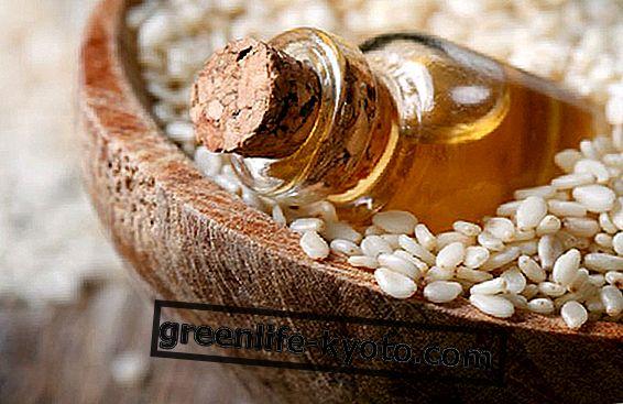Aceite de semilla, cómo elegirlo en su diversidad.