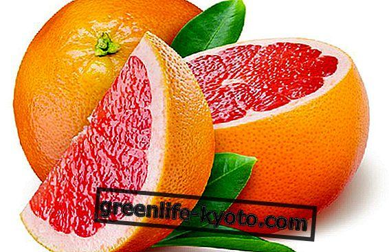 오렌지 : 유형, 특성 및 이점