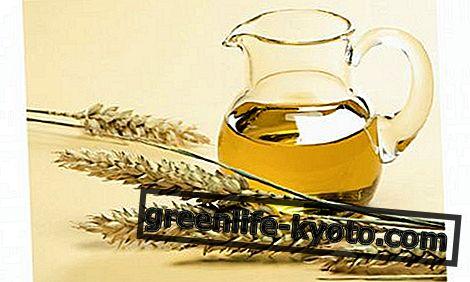Lastnosti olja pšeničnih kalčkov