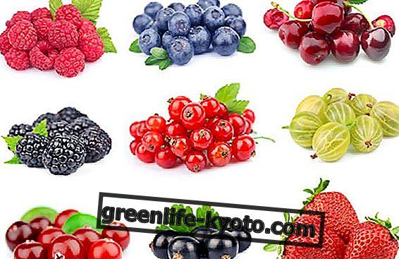 Wilde fruittheeën