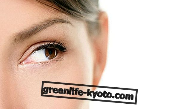 Té de hierbas para ojos sanos