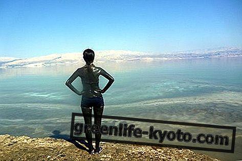 Dead Sea Mud: propriétés, utilisation, contre-indications