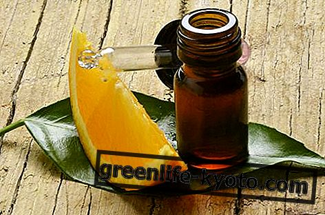 달콤한 오렌지 에센셜 오일 : 속성, 사용 및 금기