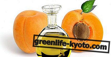 De eigenschappen van abrikozenolie