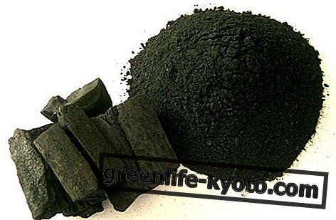 Carbono vegetal: propiedades, usos y contraindicaciones.