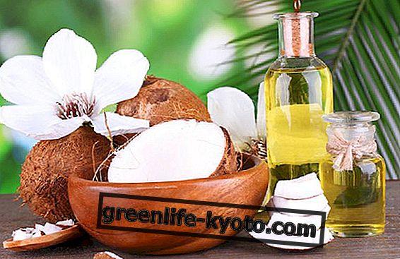 नारियल तेल के सभी उपयोग