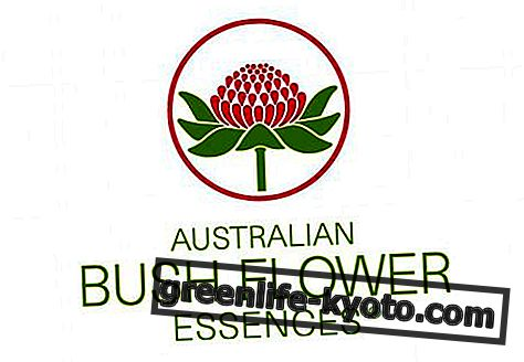 Stres Stop, avstralski cvetovi za stres