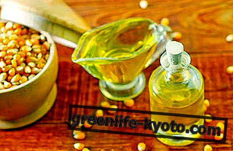 Maisiõli: omadused, omadused ja kasutamine