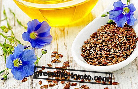 Aceite de linaza: uso para la persona y el hogar.