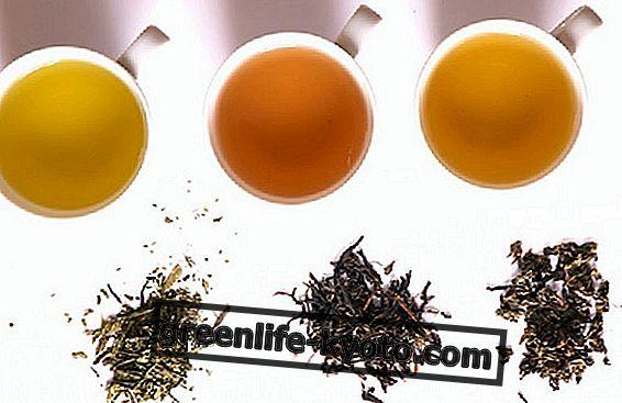 Историја чаја