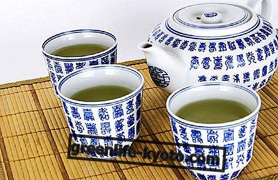 Žalioji arbata: savybės, nauda ir kontraindikacijos