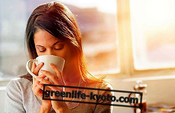 Zelený čaj pro hubnutí