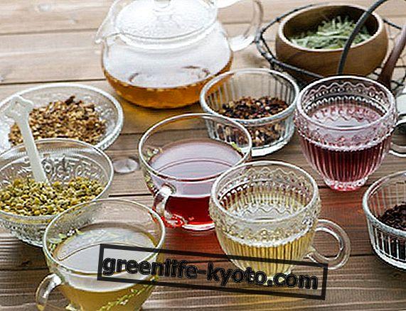 Zeliščni čaji za želodec
