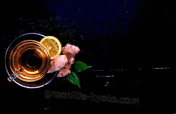 Imbieras ir citrina, paros suvartojimas