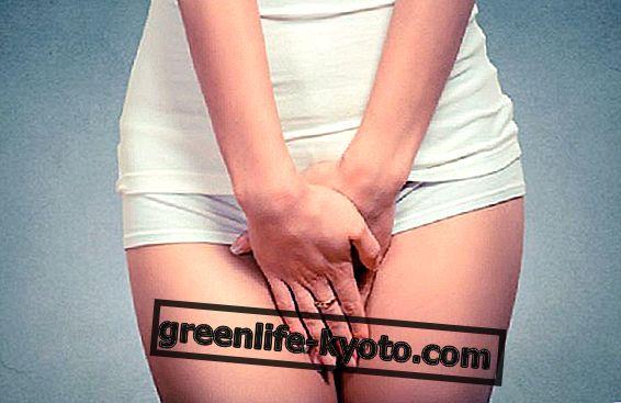 Moringa oleifera, kandidiyaza karşı etkili kaynak