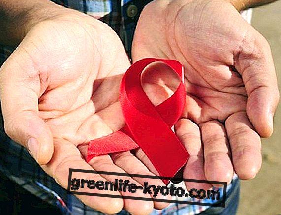 Día Mundial del SIDA 2014: datos, eventos e información útil