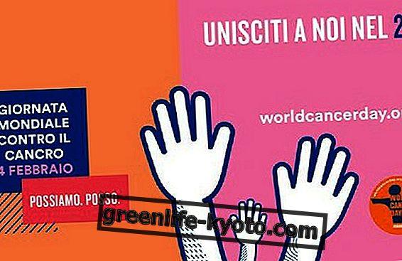 4 Φεβρουαρίου: Παγκόσμια ημέρα για την καταπολέμηση του καρκίνου