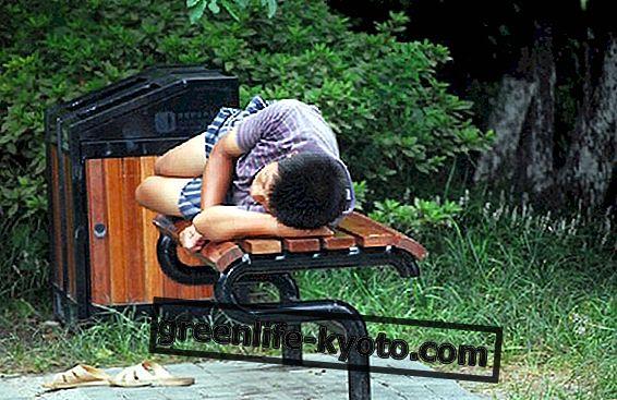 Sonolência durante o dia: o que fazer?