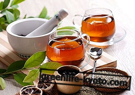 Žolelių arbatos miego reikmėms, kas jos yra ir kaip jas paruošti