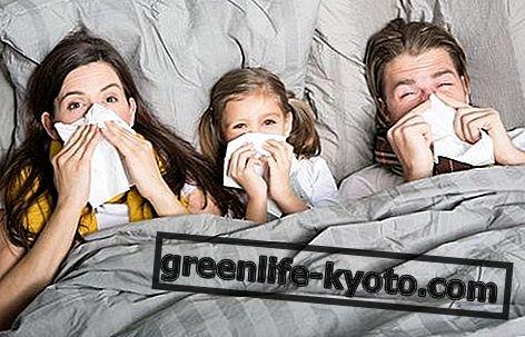 감기 : 증상, 원인, 모든 치료