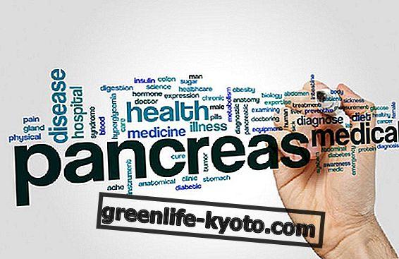 膵臓:それを健康に保つ方法