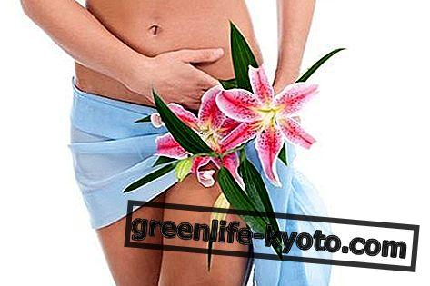 Vaginitis: tünetek, okok, minden jogorvoslat
