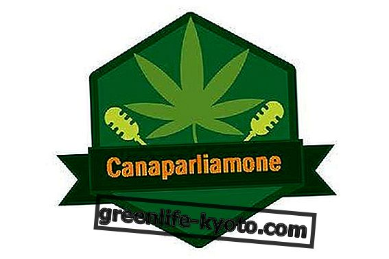 Canaparliamone: इटली में भांग और विघटन का उपयोग