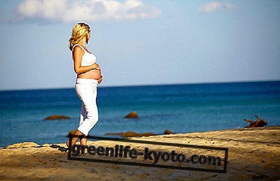 V nosečnosti, obdan z morjem