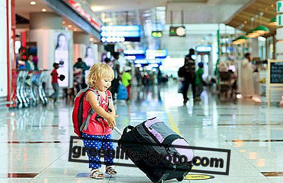 Путујте безбедно са децом, СИП савет