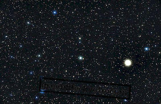 Perhe-tähtikuvioita