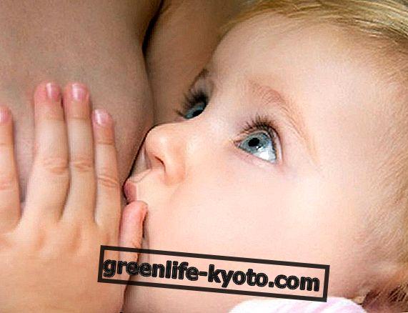 Kas rinnaga toitmine kaitseb tsöliaakiat?