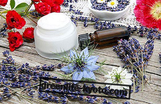 Přírodní kosmetika pro pleťové houby