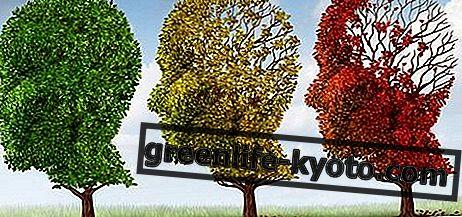 Загуба на паметта: симптоми, причини, всички лекарства