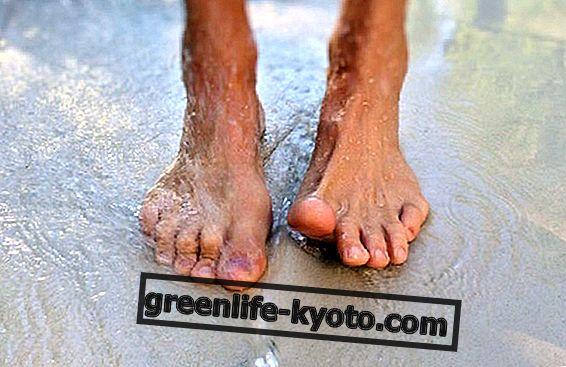 Zdravé nohy, zdravé tělo