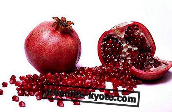 Der Granatapfel: Frucht der ewigen Wiederkehr