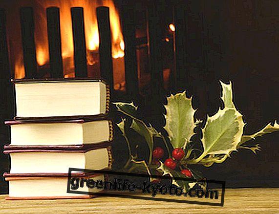 5 bøger om vinteren for at lære dig selv at kende