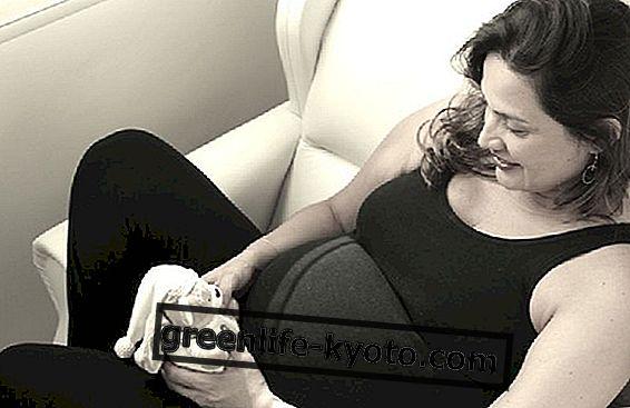 Ingwer in der Schwangerschaft: ja oder nein?