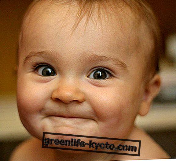 El niño de cero a tres años: natural y ecológico.