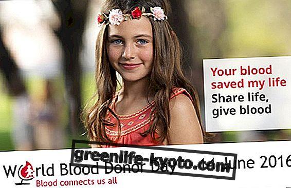 Paaukokite kraują: nedidelę be galo svarbų gestą