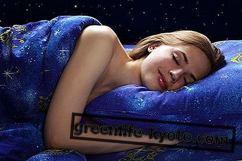Fasen van de slaap, hoeveel en welke zijn