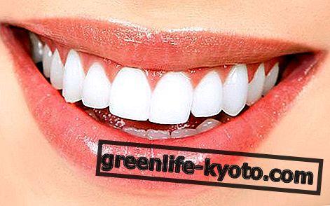歯、ホメオパシーの自然療法