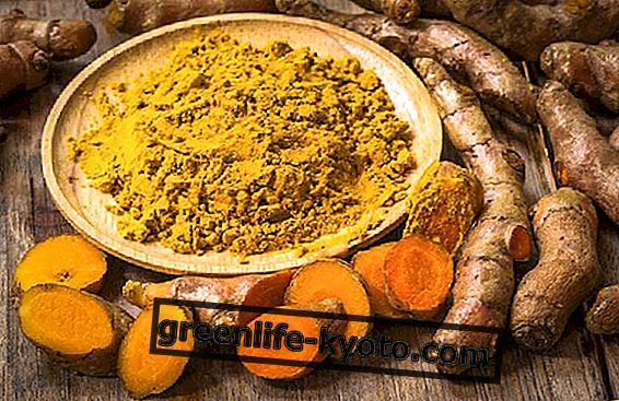 Anti-inflammatoriske egenskaber af gurkemeje