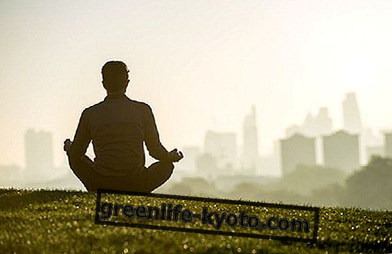 Što je svjesnost