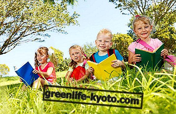 Ecopedagogy: mokyklos ir vaikų darželiai atvirame ore