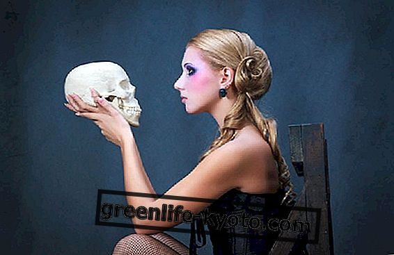 Biểu tượng của hộp sọ và nhiều cấp độ của Tâm trí
