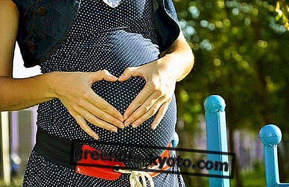 Lukrecja w ciąży?  Powiedzmy sobie jasno