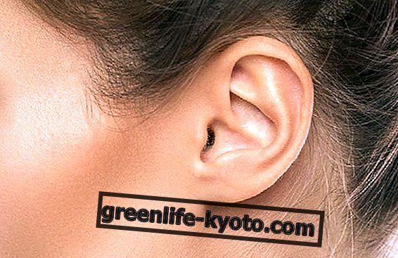 Natūralios priemonės ausų sveikatai