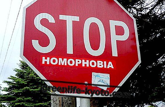 Worldpress Photo 2015, 동성애 공포증과 사랑의 본질